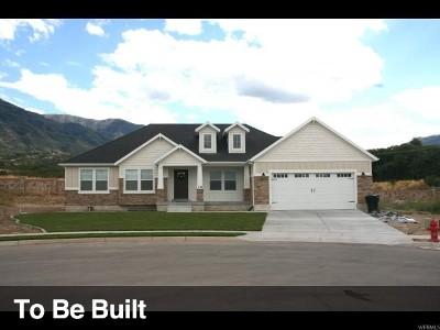 Lehi Single Family Home For Sale: 3386 N Hillside Dr #4