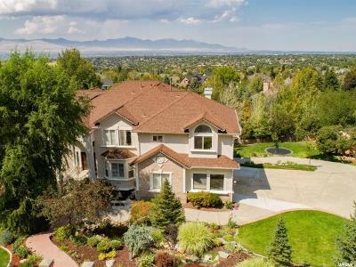 Sandy Single Family Home For Sale: 11942 S Hidden Brook Blvd