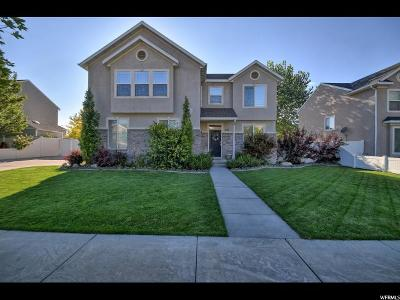 Springville Single Family Home For Sale: 467 N 800 W