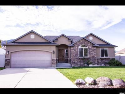 Spanish Fork Single Family Home For Sale: 1634 E 1510 S