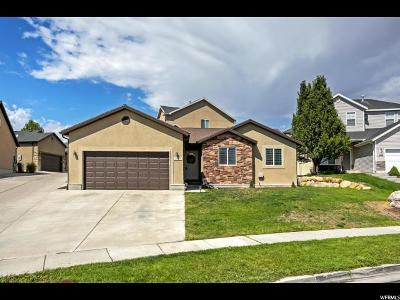 Saratoga Springs Single Family Home For Sale: 2089 N Raspberry Dr