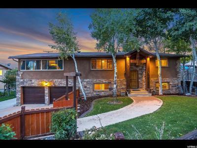 Pleasant Grove Single Family Home For Sale: 352 S 1400 E