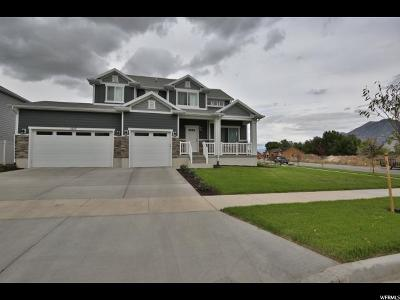 Spanish Fork Single Family Home For Sale: 2537 E Double Tree Dr