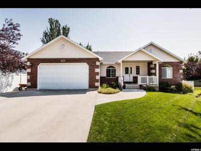 River Heights Single Family Home For Sale: 786 E Clover Cir