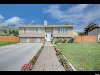 Orem Single Family Home For Sale: 1784 N 760 W