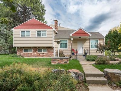Salem Single Family Home For Sale: 195 South Main