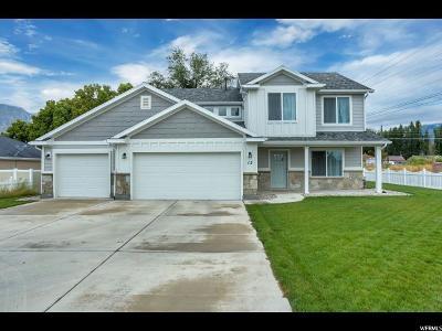 Springville Single Family Home For Sale: 12 N 450 W