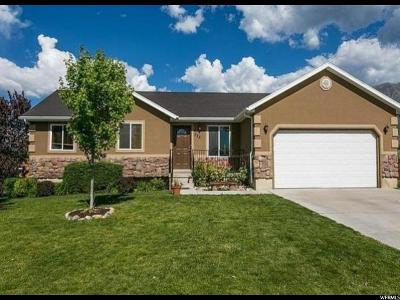 Santaquin Single Family Home For Sale: 388 N 400 W