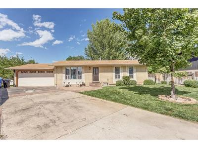 Orem Single Family Home For Sale: 429 E 835 N