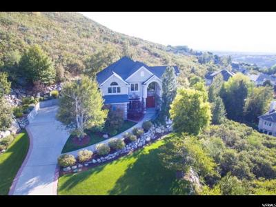 Sandy Single Family Home For Sale: 10074 Stone Mountain Cv