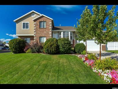 American Fork Single Family Home For Sale: 542 W 500 N