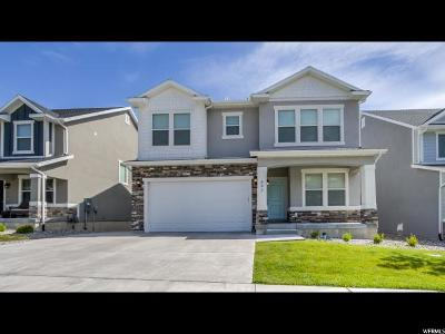 Lehi Single Family Home For Sale: 643 W 4100 N