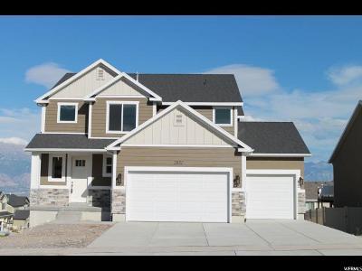 Saratoga Springs Single Family Home For Sale: 2832 S Kollman Ln