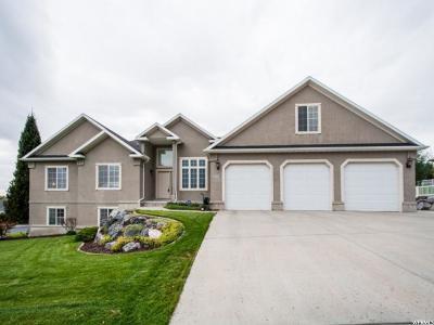 Cedar Hills Single Family Home For Sale: 9425 N 3830 W