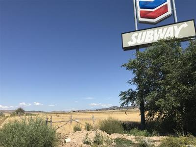 Commercial Lots & Land For Sale: 300 W 450 N