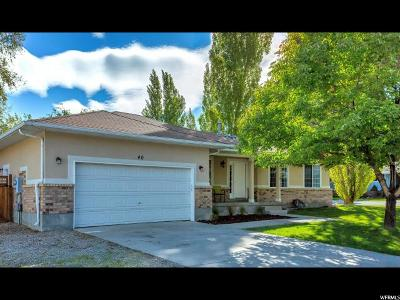 Stansbury Park Single Family Home For Sale: 40 N Lakeview