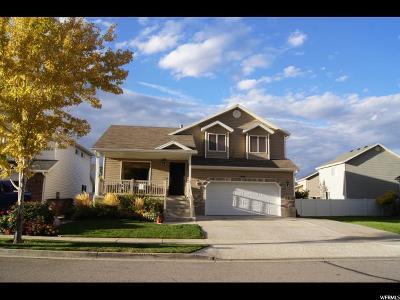 Draper Single Family Home For Sale: 350 W Bricker Dr S