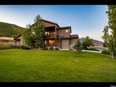 Wasatch County Townhouse For Sale: 519 Ranch Way #9