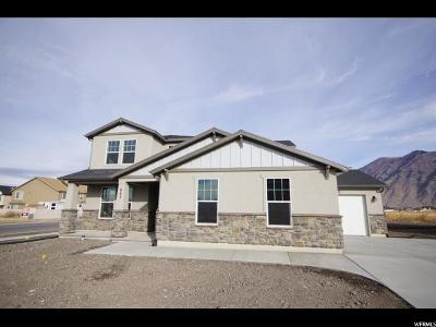 Springville Single Family Home For Sale: 942 W 1050 S