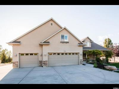 Draper Single Family Home For Sale: 11964 S 700 W