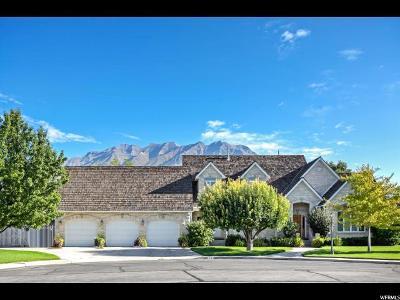 Orem Single Family Home For Sale: 1247 E 430 N