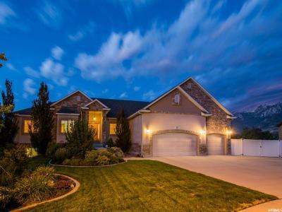 Draper Single Family Home For Sale: 12053 S Katelyn Park Ct