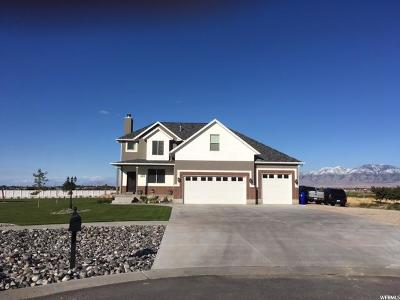 Grantsville Single Family Home For Sale: 417 E Hollywood Ct