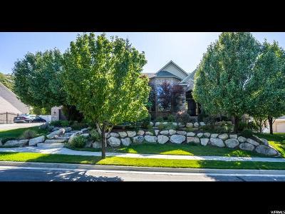 Draper Single Family Home For Sale: 782 E Draper View Rd
