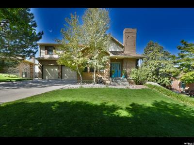 Springville Single Family Home For Sale: 56 S 1000 E