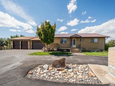 Spanish Fork Single Family Home For Sale: 7466 S 1800 W