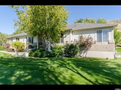 Willard Single Family Home For Sale: 1616 N Main W