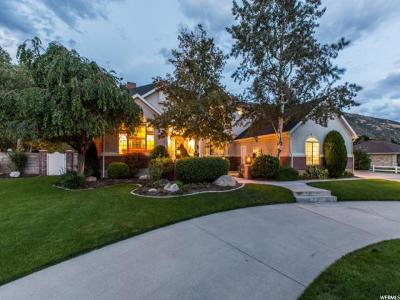 Sandy Single Family Home For Sale: 11417 S Jolley Acres Cir