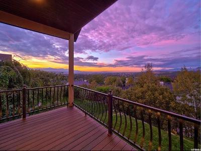 Draper Single Family Home For Sale: 1389 E Magic Wand St