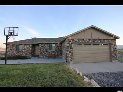 South Rim Single Family Home For Sale: 2473 W Rim Rock
