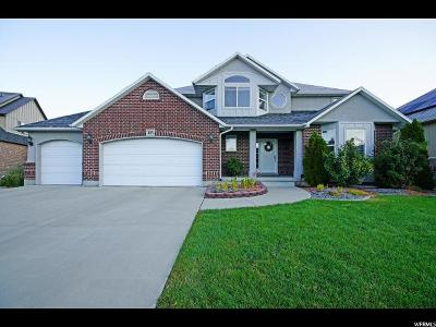 Draper Single Family Home For Sale: 483 E Foxstone Cv