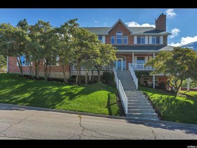 Provo Single Family Home For Sale: 1078 E Hillside Dr.