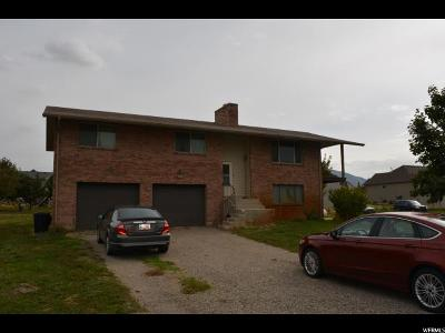 Spanish Fork Single Family Home For Sale: 1501 S Mill Rd
