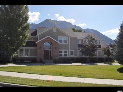Alpine Single Family Home For Sale: 412 N Alpine Blvd