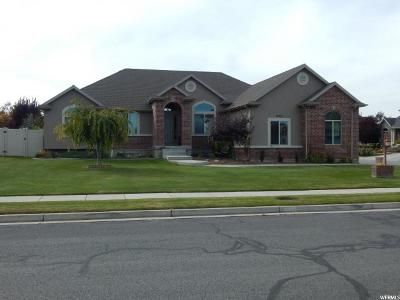 Kaysville Single Family Home For Sale: 1435 W Whispering Meadow Ln