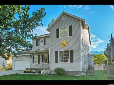 Orem Single Family Home For Sale: 121 S Ridgecrest