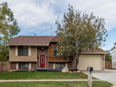 Ogden Single Family Home For Sale: 975 N 1025 E