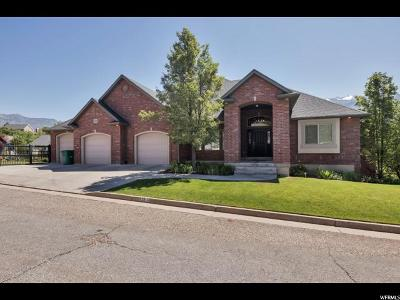 Layton Single Family Home For Sale: 2814 E Deere Valley Dr N
