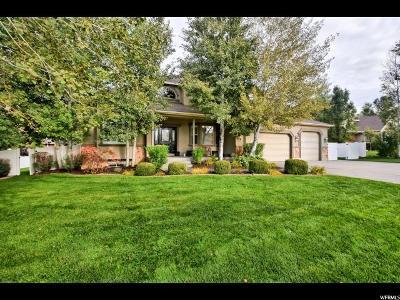 Alpine Single Family Home For Sale: 613 S Sierra Cir