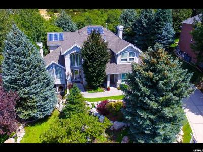 Sandy Single Family Home For Sale: 11833 S Hidden Canyon Ln E