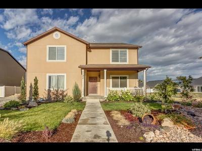 Springville Single Family Home For Sale: 834 Mattea Ln