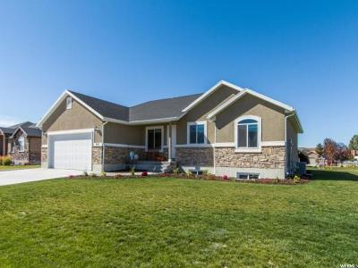 Tremonton Single Family Home For Sale: 845 N 470 E