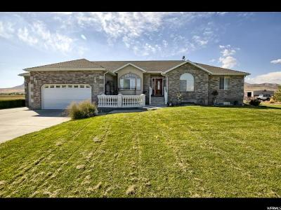 Tremonton Single Family Home For Sale: 10765 N 10800 W