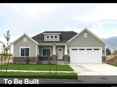Orem Single Family Home For Sale: 823 W 1860 N #10