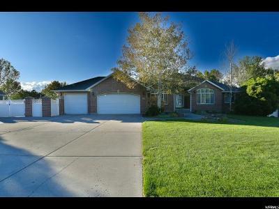 Draper Single Family Home For Sale: 1161 Lone Peak Ln W
