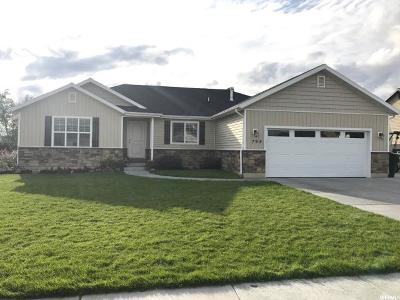 Tremonton Single Family Home For Sale: 795 N 470 E